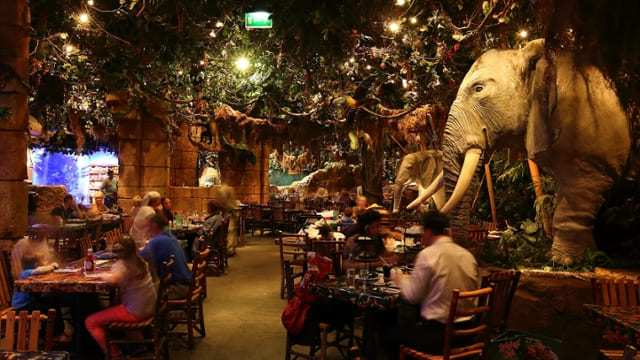 rainforest-cafe-3